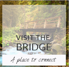 Visit the Bridge